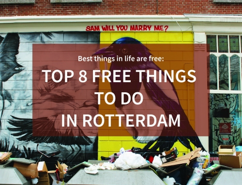8 Free Things to Do in Rotterdam