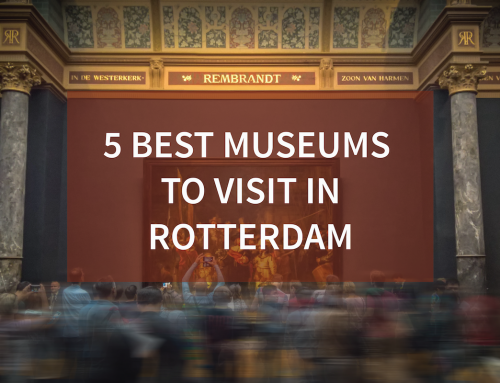 5 Must-See Museums in Rotterdam, Netherlands